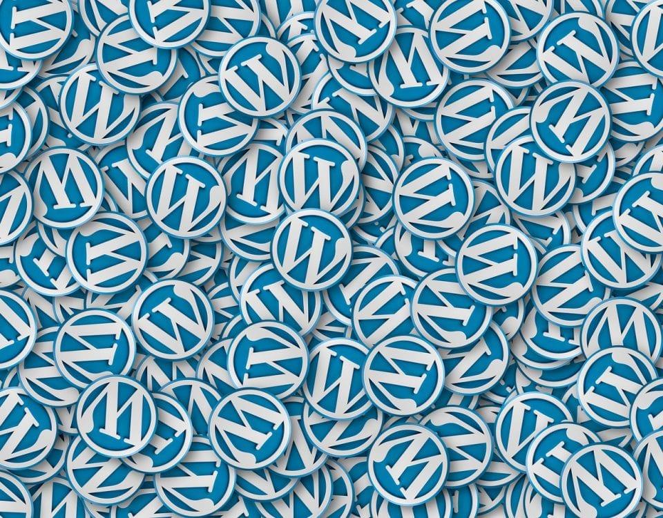 Cara Update Wordpress